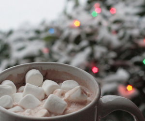 winter, christmas, and marshmallow image