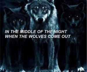 Lyrics, wolves, and liam payne image