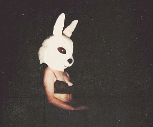 grunge, dark, and bunny image