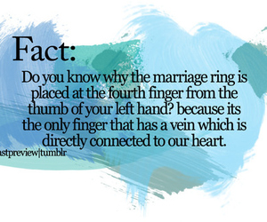marriage, love, and fact image