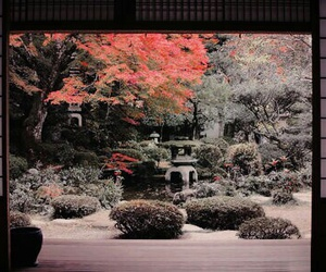 japan, japanese garden, and relax image