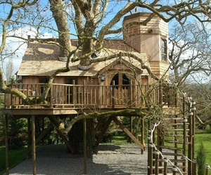 tree house, house, and treehouse image