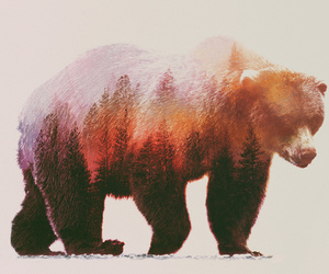 bear, art, and forest image