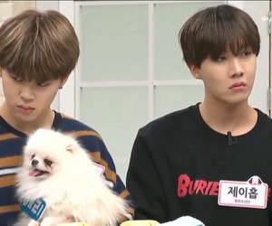 cute puppy, v, and bts image