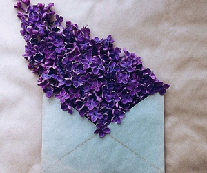 flowers and Letter image