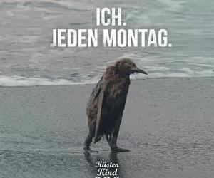 deutsch, sprüche, and montag image