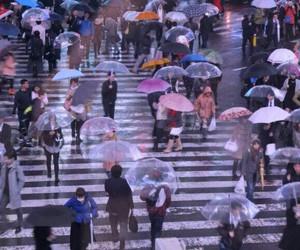 rain, people, and city image