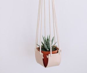 leather and plant image