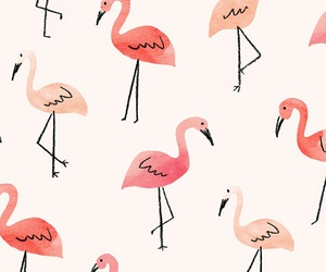 wallpaper, pink, and flamingo image