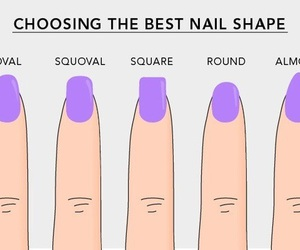 nails, shape, and oval image