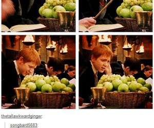 harry potter and fred or george image