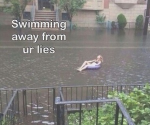 lies, funny, and swimming image