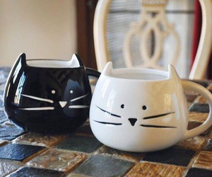kawaii, kitten, and neko image