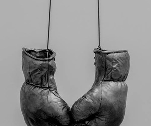 boxing and fight image