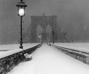 snow, winter, and black and white image