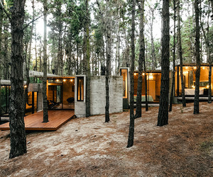 architecture, house, and forest image