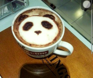 coffee, night, and panda image