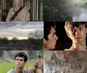 aesthetic, maze runner, and newtmas image