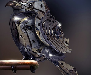 steampunk and bird image