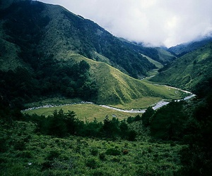 green, mountains, and landscape image