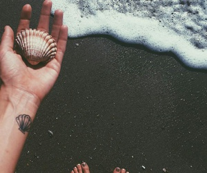 photography, shell, and Tattoos image