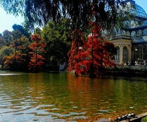 autumn, madrid, and spain image