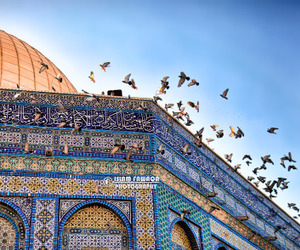 islam, Jerusalem, and ّالقدس image