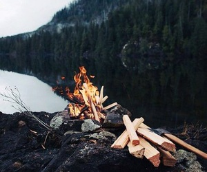 fire, nature, and cold image