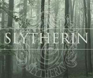 harry potter, slytherin, and books image