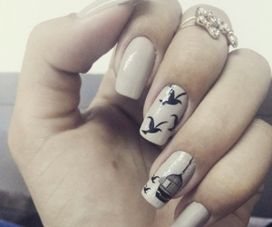 birds, free, and nails image