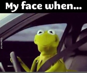 funny, car, and kermit image