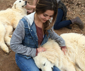 danielle campbell, The Originals, and theme image