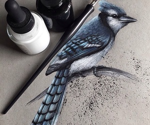 bird, art, and drawing image