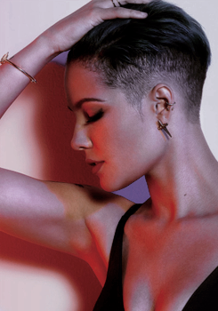 badlands, singer, and halsey image