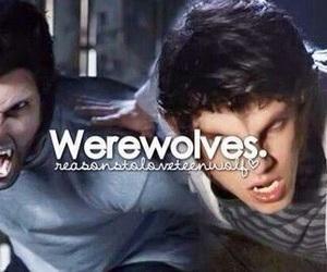 teen wolf, werewolves, and scott mccall image