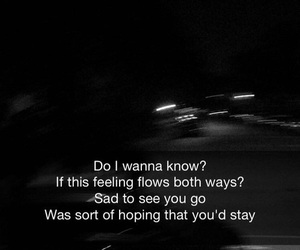 arctic monkeys, quotes, and do i wanna know image
