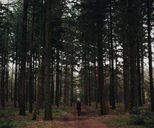 alone, dark, and explore image