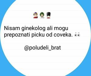 balkan, picka, and poludeli brat image