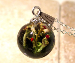 forest, jewelry, and lichen image