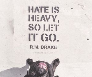 dog, go, and hate image