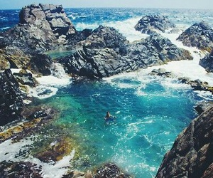 summer, sea, and nature image