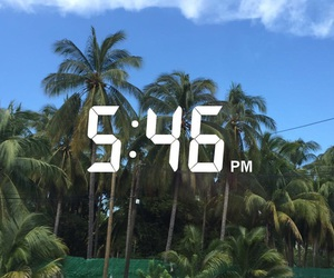 mexico, palm trees, and summer image