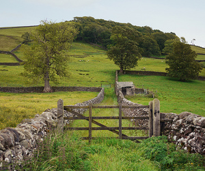 settle and england image