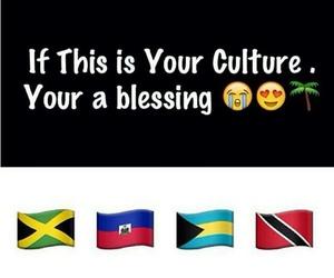 bahamas, carnival, and haiti image