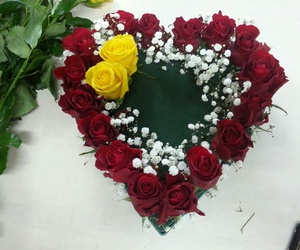arrangements, red, and rose image
