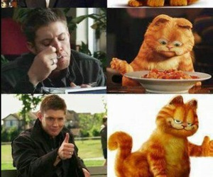supernatural, garfield, and dean image