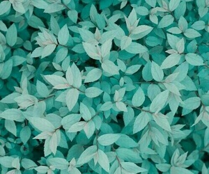 wallpaper, green, and blue image