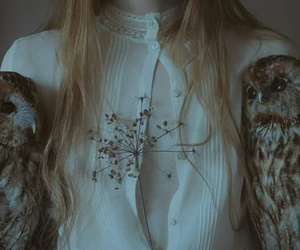 owl, pale, and laura makabresku image