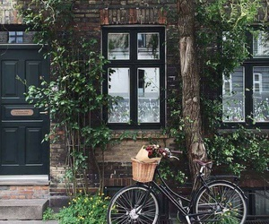 bicycle, bike, and home image