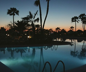 pool, palms, and summer image